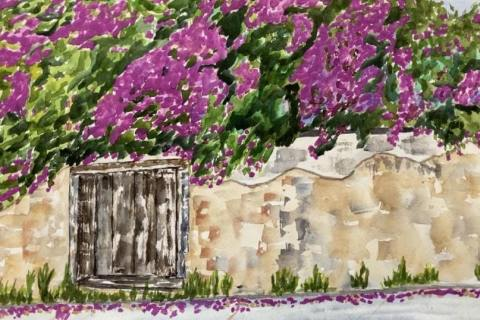 15-Laura-Lockett-Scott-Street-Bougainvillea,-Old-Monterey